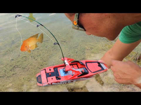 TOY Boat Catches Colorful  FISH For Baby Jaws!!