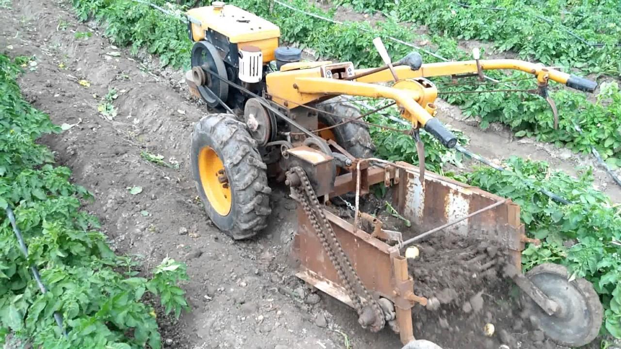 Самодельный копатель культиватор картофеля фото