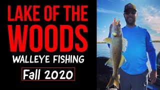 Lake of the Woods - Walleye Fishing Fall 2020