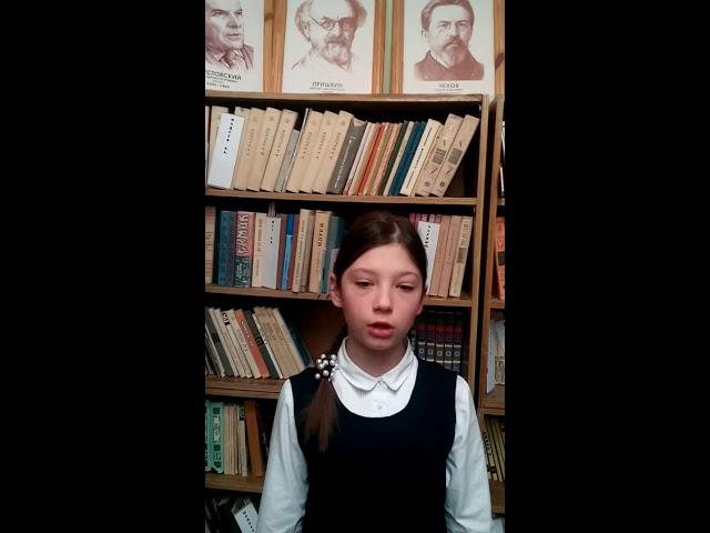 Изображение предпросмотра прочтения – АнастасияОсенчугова читает произведение «Ворона» А.А.Блока