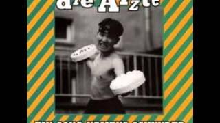 Die Ärzte - Ein Song Namens Schunder 1995 (Single)