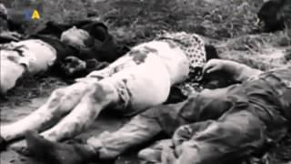 Трагедия Бабьего Яра