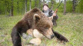 Охотник с медведем спрятались на одном дереве - NAT GEO WILD
