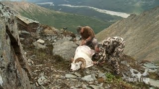 How to Cape a Dall Sheep for Taxidermy with Steven Rinella - MeatEater
