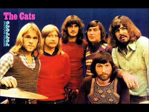 The Cats Live In De Vriendschap  ´t Veld Op 28 Aug 1985
