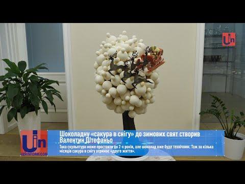 Шоколадну «сакуру в снігу» до зимових свят створив Валентин Штефаньо