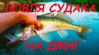 Ловля СУДАКА на ДЖИГ Рыбалка на СПИННИНГ на реке ХОПЕР