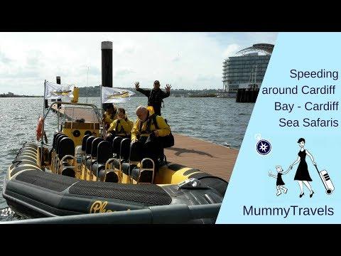 Speeding around Cardiff Bay - Cardiff Sea Safaris