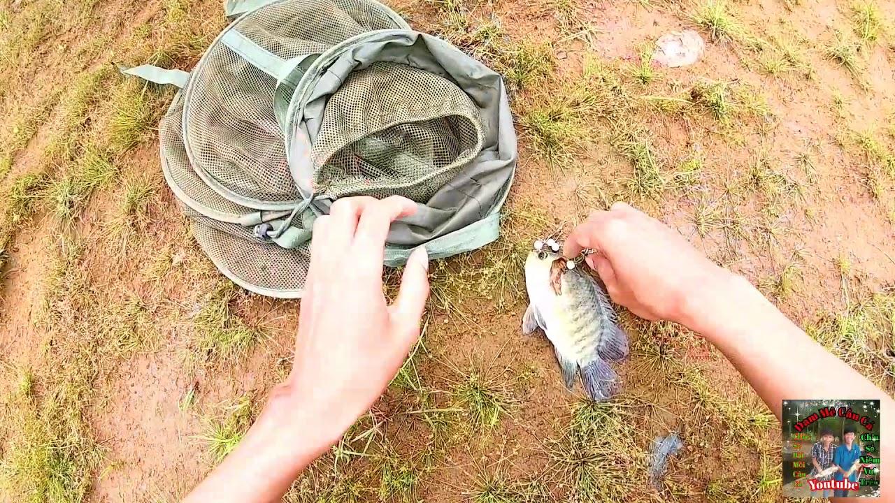 Mồi nền ủ chuyên câu cá trôi, chép và trắm Đã Lên cá trôi đỏ và rô phi | Săn Bầy Cá khủng T5