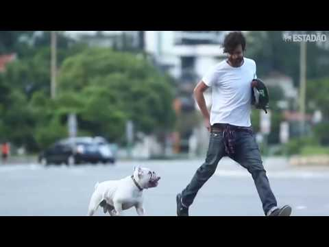Un bulldog skater aprovecha la calle libre de São Paulo