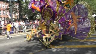 West Indian Day Parade~2015~Brooklyn~It