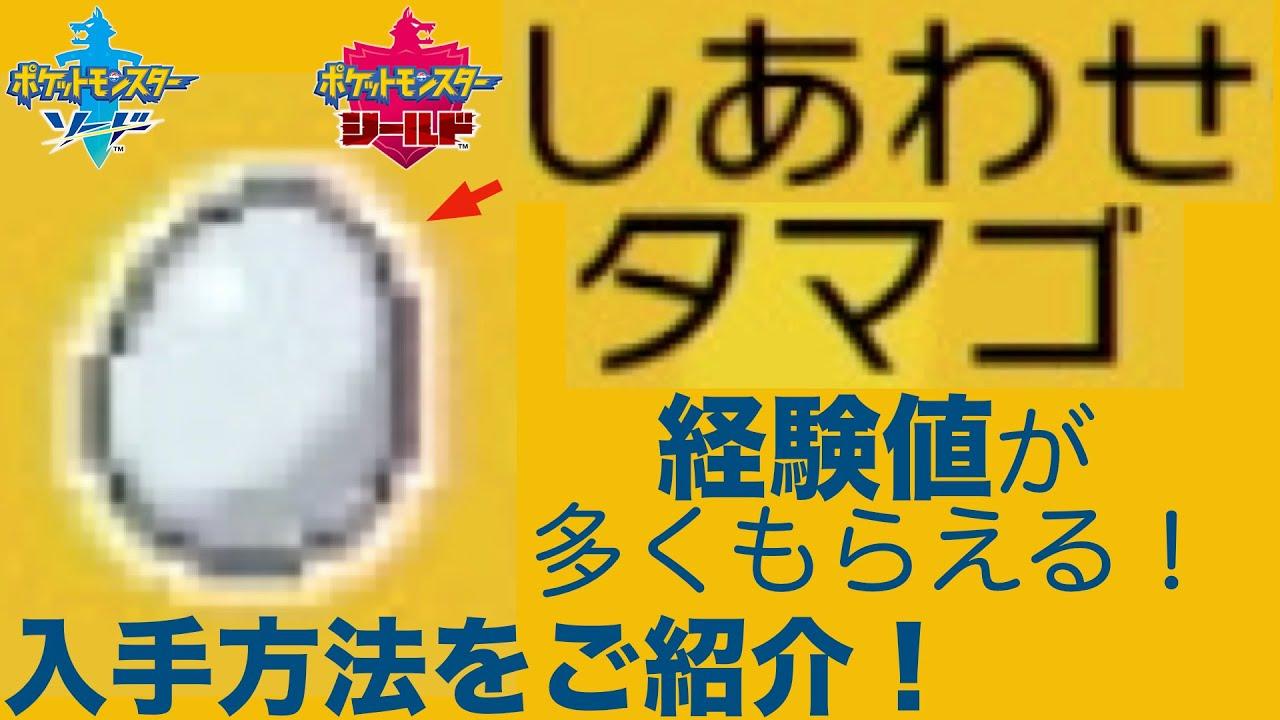 ポケモン剣盾 経験値