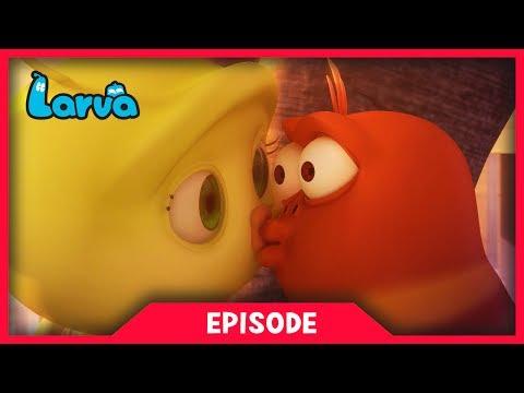 LARVA - MAYFLY PART 1 AND 2 | Cartoon Movie | Cartoons For Children | Larva Cartoon | LARVA Official