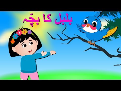 Permalink to Baby Cartoon Urdu Language
