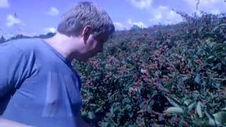 Matt Ward touring The Fruit and Berry Farm in North Knoxville, TN