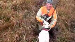 Banjo Pheasant Hunt W Abby, Marty