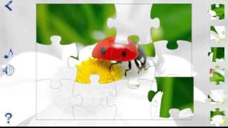 Jigsaw Puzzles: Seasons