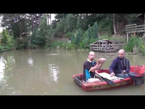 Electrofishing / Electro Fishing My Pond - Part 1