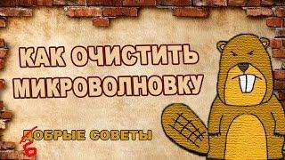 ЧИСТИМ МИКРОВОЛНОВКУ (Бобрые советы)