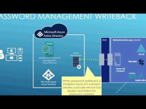 microsoft password reset down