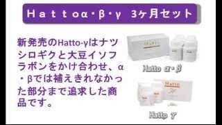Hattoα・β・γ 3ヶ月セット