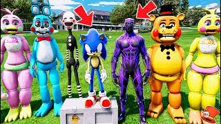 TOY ANIMATRONICS vs BLACK PANTHER & SONIC THE HEDGEHOG! (GTA 5 Mods For Kids FNAF RedHatter)