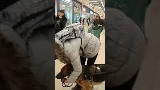 """Магазин """"Лента"""" инвалида по зрению не пропускают с собакой повадырём,город Волгоград"""