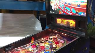 Pinball STERN RollerCoster Tycoon 2002 Sale On EBay
