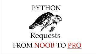 Learning Python Requests In ONE VIDEO