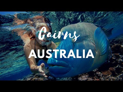 Cairns Vacation Travel Guide