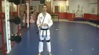 FAST KICK TRAINING  |  hip and leg strength for Martial Arts