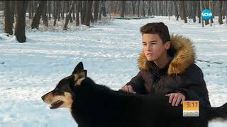 """БЪЛГАРСКИЯТ """"ХАЧИКО"""" - Кучето, което чака починалата си стопанка! - (ВИДЕО)"""