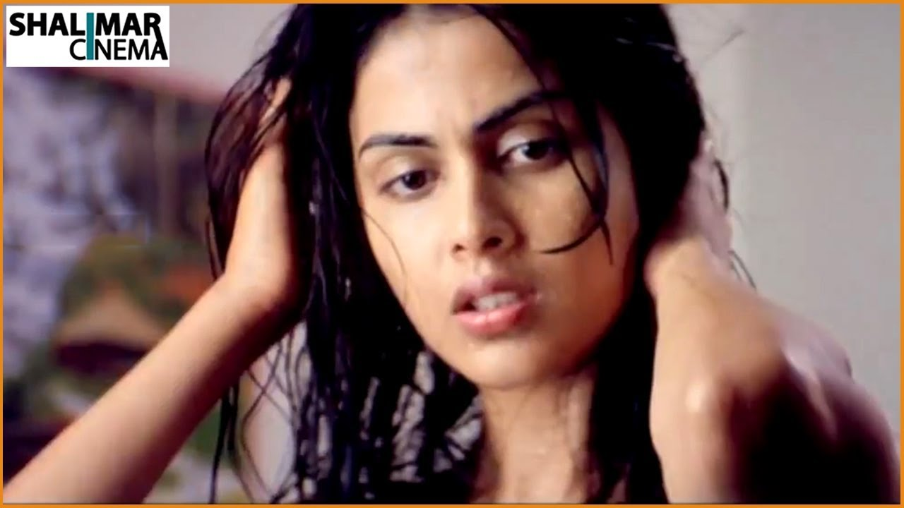 Genelia D'Souza Scenes Back to Back || Latest Telugu Movie ...