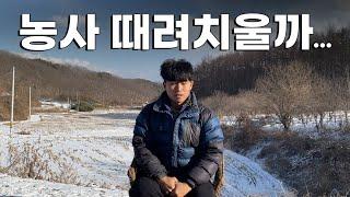 귀농3년차 방울토마토 비닐하우스 1,000평 수익공개