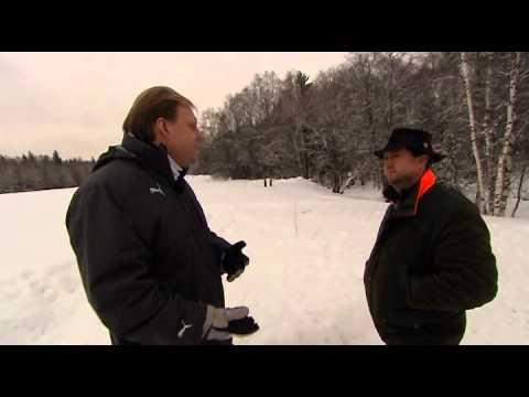 Утреннее ТВ: следы на снегу.