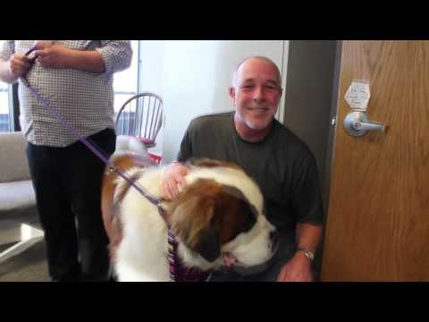 Walter The St  Bernard Visits Cat Country 102 9