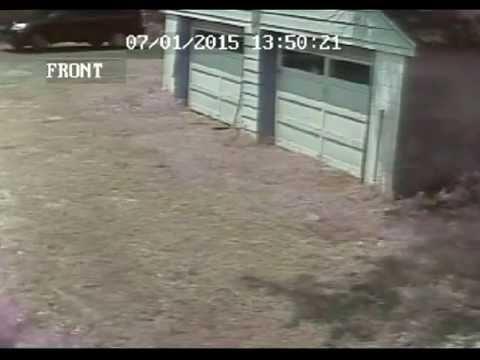 Concord Pond Georgetown DE Break-in 7 1 2015
