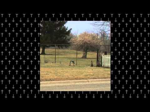 Bones & Dylan Ross - DawsonsCreek [Prod. Sango]