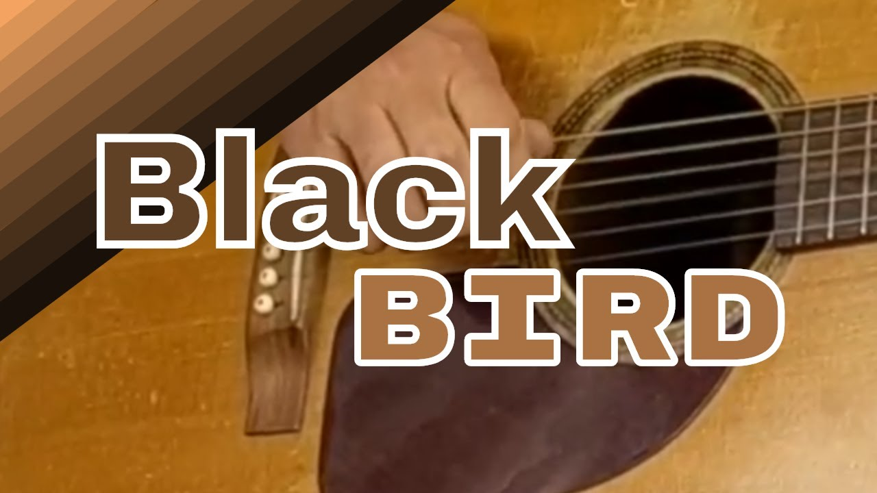 how to play blackbird on guitar fingerstyle blackbird guitar tabs pdf youtube. Black Bedroom Furniture Sets. Home Design Ideas