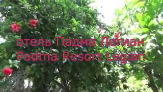 Padma Resort Legian hotel.Bali. Отель Падма Легиан. Бали.