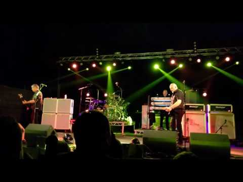 The Stranglers - Golden Brown - Loopallu 2016