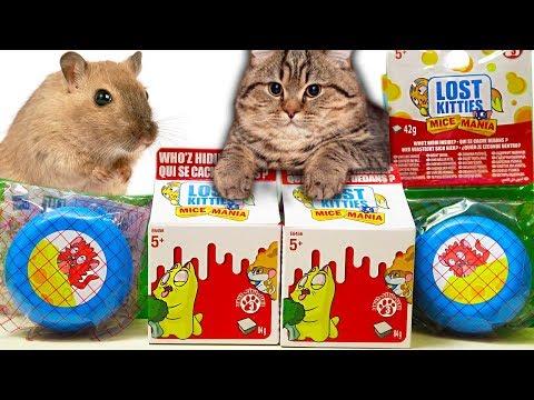 МЫШИ ПРОТИВ КОТЯТ! Лост Китис СЕРИЯ 3 Lost Kitties