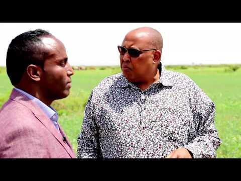 Warshdii Ugu Horeysay Ee Somaliland Daqiiqda Soosaarta Boodhari Mills