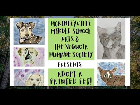 Adopt A Painted Pet (McKinleyville Middle School and the Sequoia Humane Society)