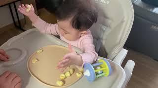 8개월 아기 간식 / 감자치즈볼 먹방 / 촉감놀이는 덤…