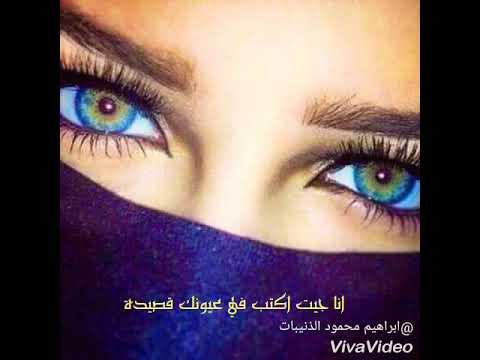 أكيد حمال كبير جمال العيون شعر Gimsaramotors Com
