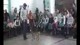New Dog Training Performance At School
