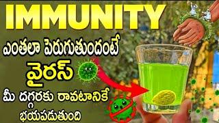 ఇమ్యూనిటీ పెంచి క*రోన వైరస్ ని తరిమికొట్టే అద్భుతమైన చిట్కాలు | Immune System Boost Tips | Immunity