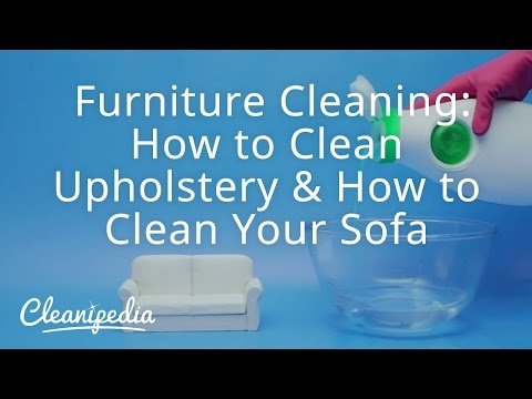 Furniture Cleaning: How to Clean Upholstery & How to Clean Your Sofa