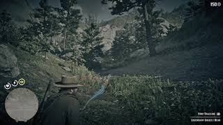 Red Dead Redemption 2 - Hunting Legendary Grizzly